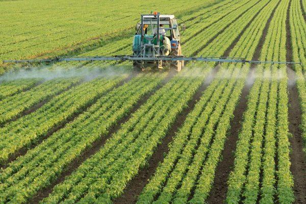 Трактор опрыскивает поле ядохимикатами