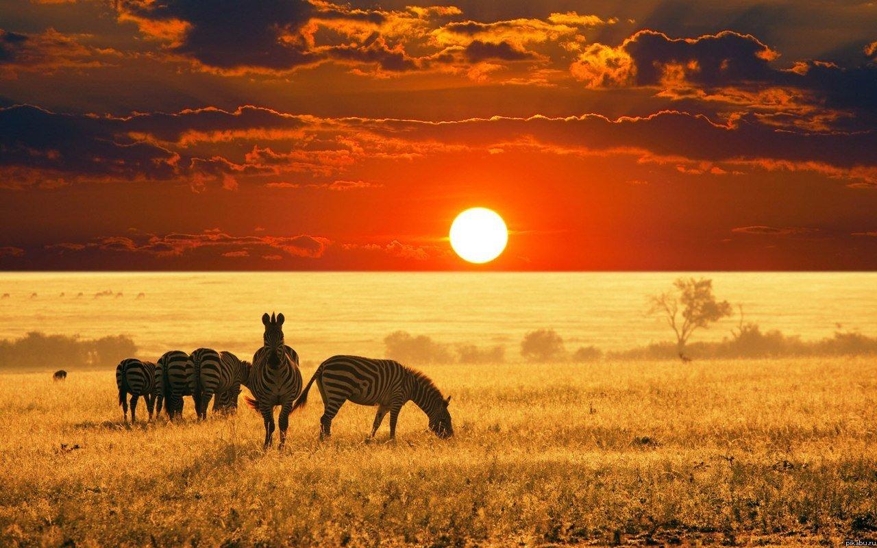 Африка: жизнь в ином измерении