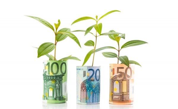 Ростки в купюрах евро