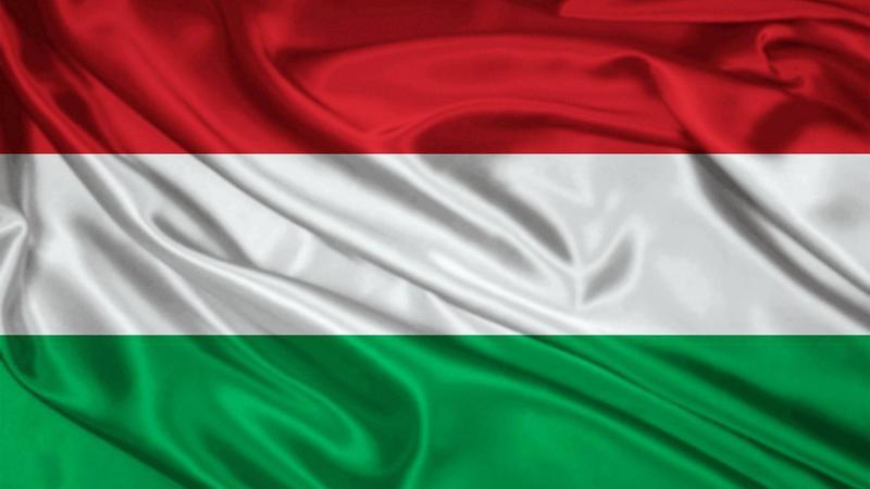 О работе в Венгрии