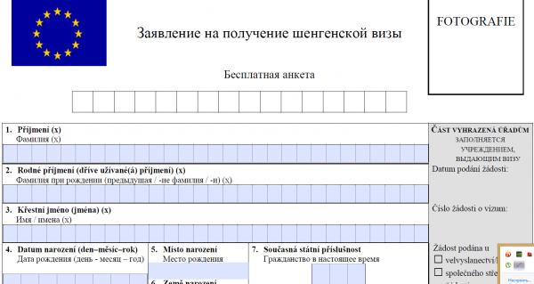 Скриншот анкеты на «шенген»