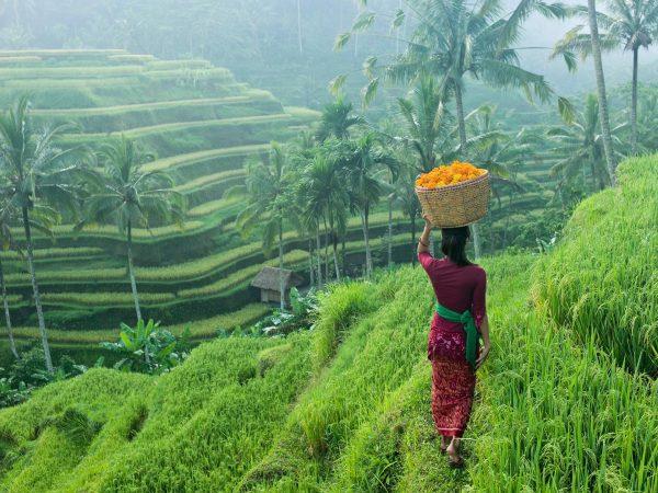 Индонезийка на склоне холма