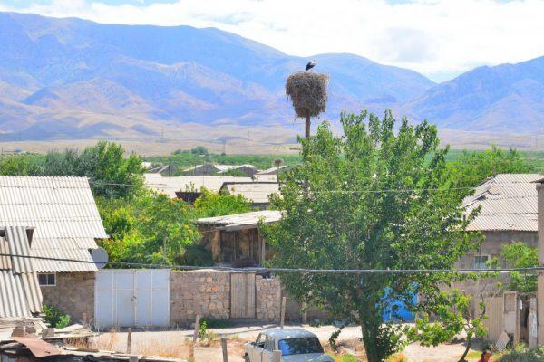 Село Суренован