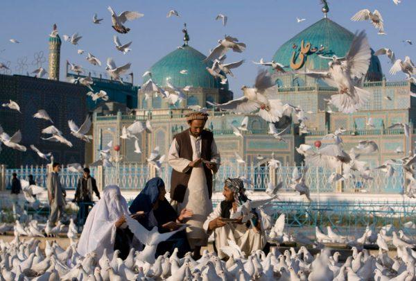 Голубиные стаи возле Голубой мечети в Мазари-Шарифе