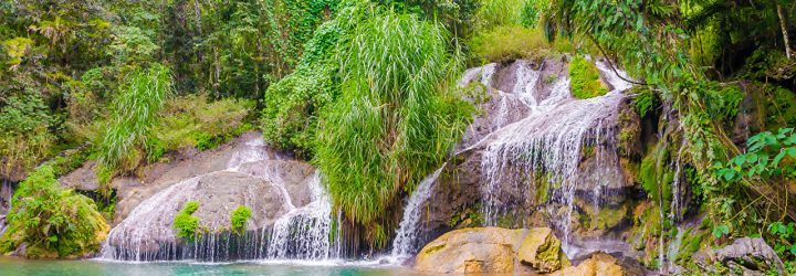 Куба природа