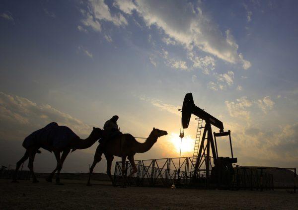 Верблюд и погонщик на фоне нефтяной скважины