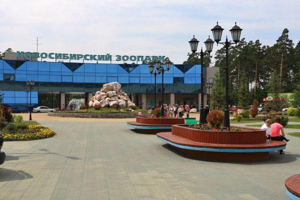 Новосибирский зоопарк в летний сезон