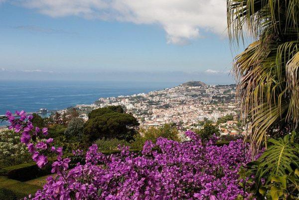 Окрестности курорта на острове Мадейра