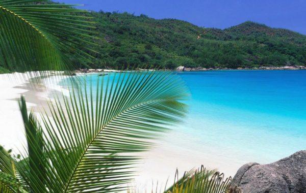 Пляж Криби