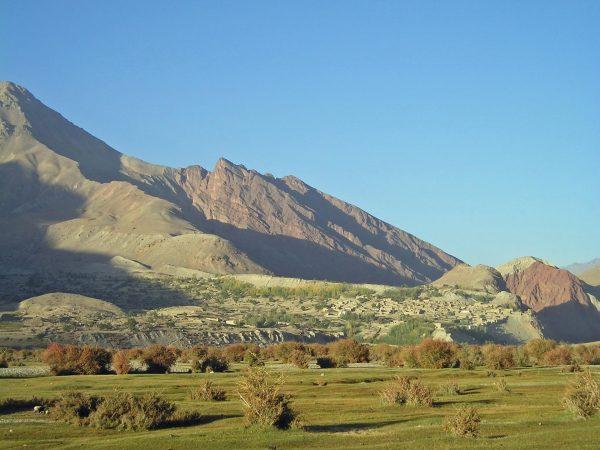 Растительность Афганистана