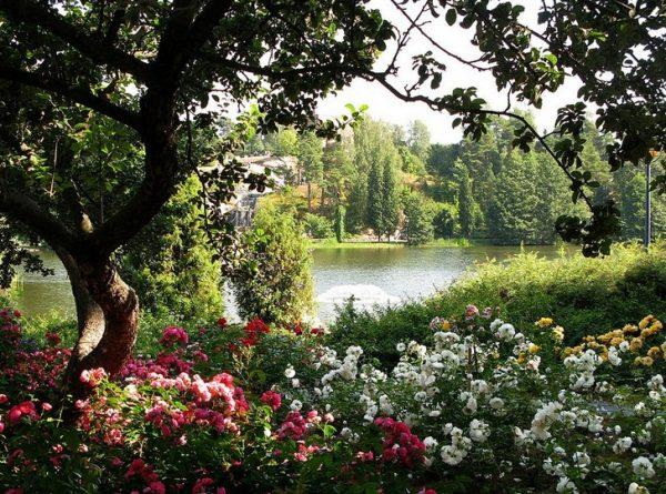 Водный парк в городе Котка