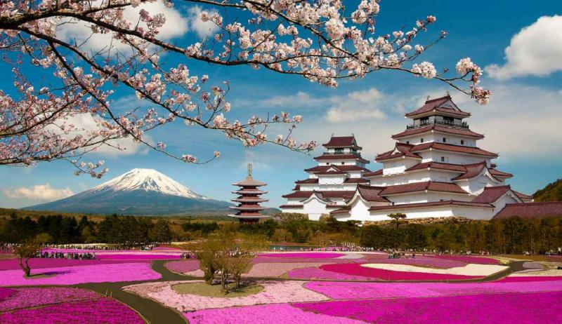 Страна, где цветёт сакура, или путешествуем по Японии