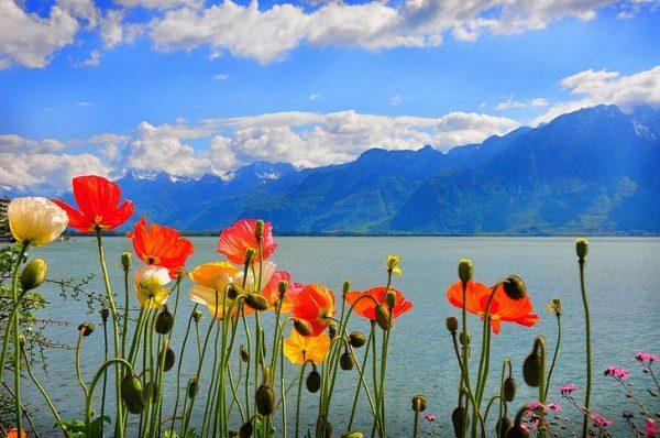 Женевское озеро в Швейцарии