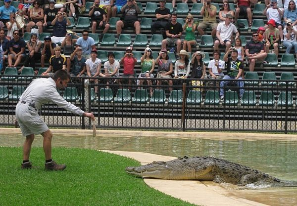 Зоопарк в Квинсленде