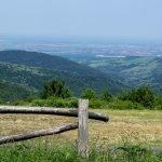 Вид на территорию парка Фрушка-Гора