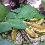 Бао — праздничное блюдо в Никарагуа