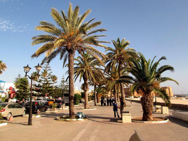 Бульвар по пути к «Медине — Медитеррании» в Хаммамете