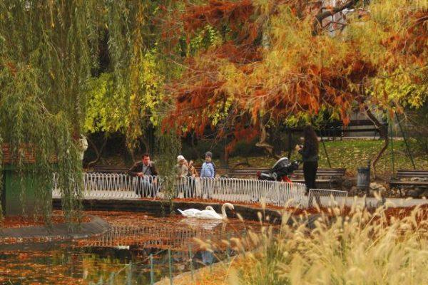Дунайский (Дунавский) парк