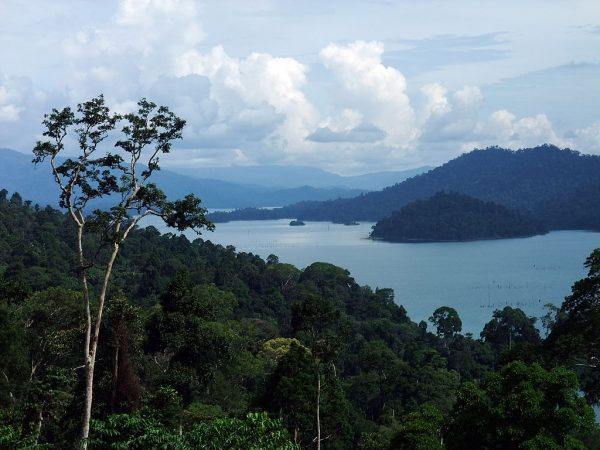 Пейзаж в Малайзии