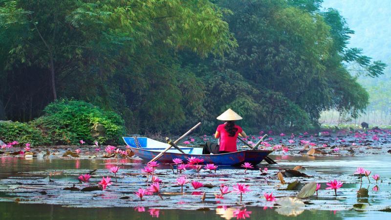 Вьетнам: лучшие курорты, города и достопримечательности для путешественников