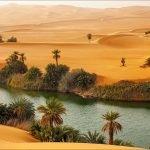 Оазис в пустыне Сахара