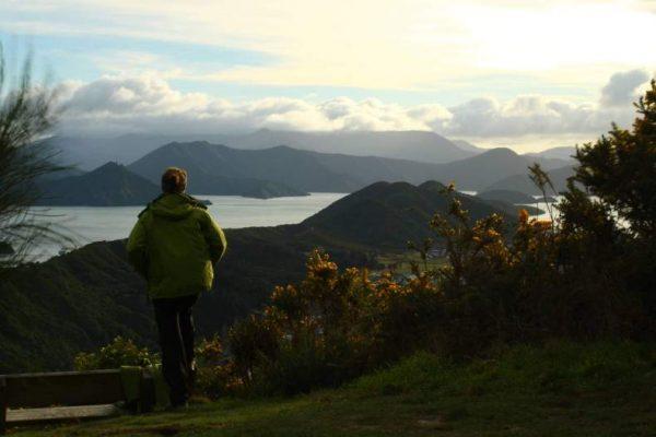 Пейзаж в Новой Зеландии