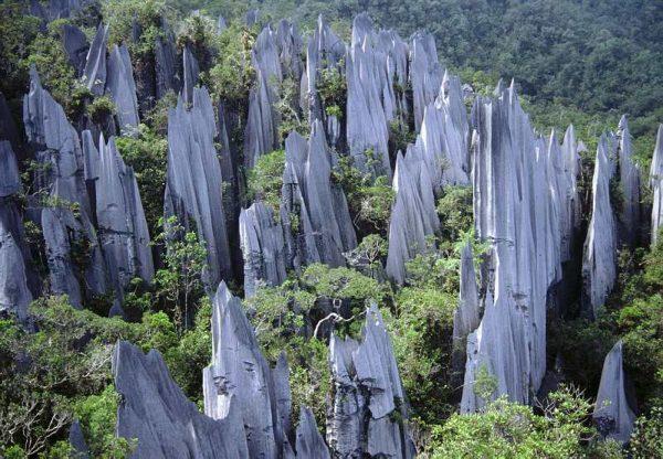 Скалы в заповеднике Мулу в Малайзии