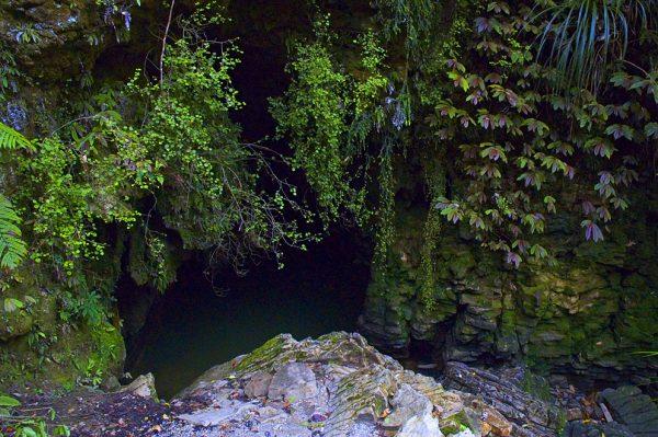 Вход в одну из пещер Вайтомо