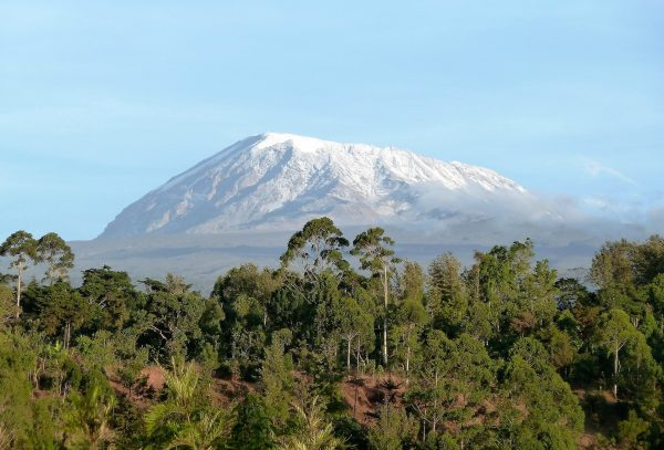 Вид на вершину Килиманджаро