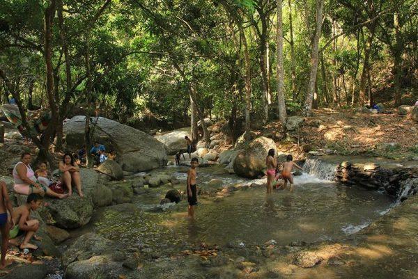 Жители Венесуэлы в парке Анри Питтье