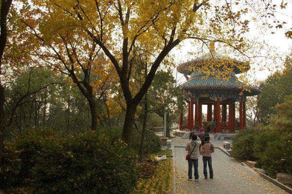 Беседка в парке Цзиншань