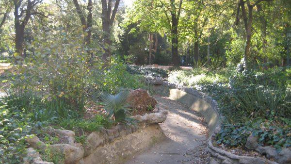 Ботанический сад Jardin Botanico
