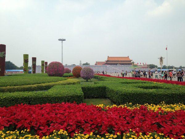 Цветочные клумбы на площади Тяньаньмэнь в Пекине
