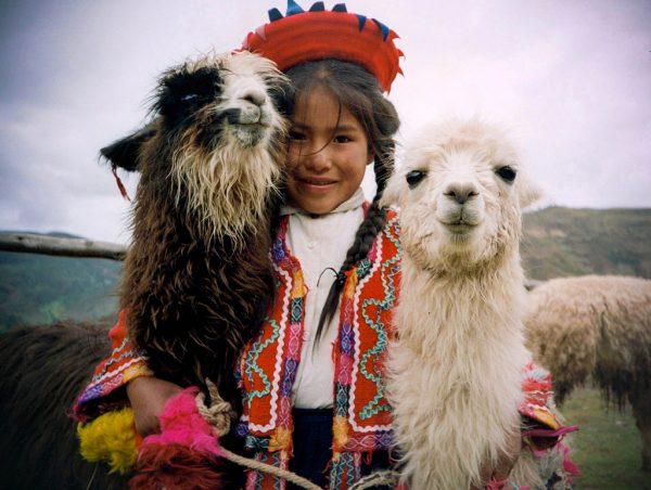 Девочка в национальной одежде и две альпаки