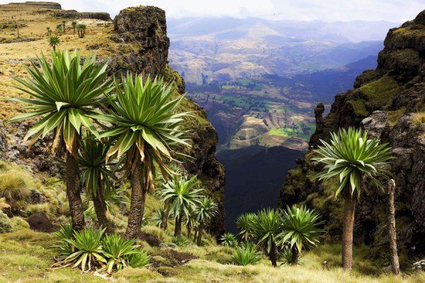 Горная местность в Эфиопии