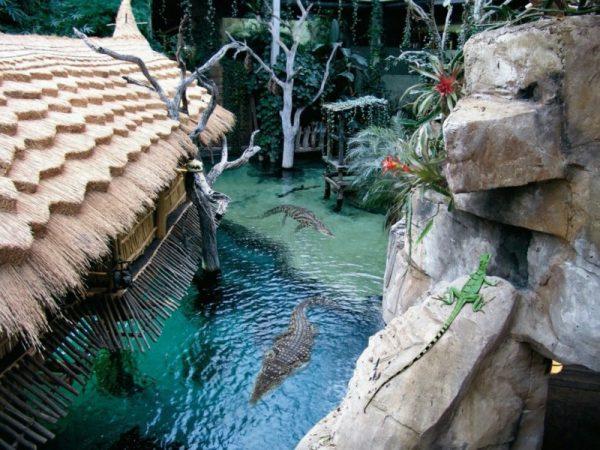 Гамбургский зоопарк Хагенбек
