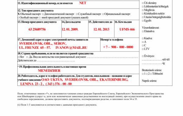 Анкета на шенгенскую визу, п.11–20