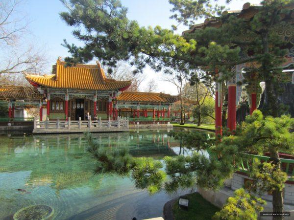 Китайский сад в Цюрихе