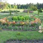 Клумба в Ботаническом саду