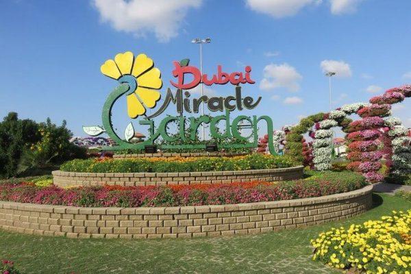 Парк цветов «Миракл Гарден» в Дубае