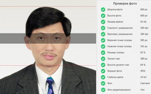 Проверка визового фото в программе