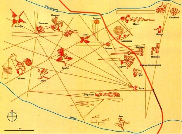 Схема рисунков в пустыне Наска