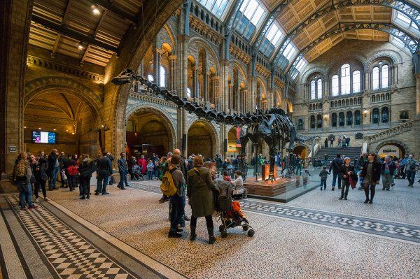 Толпы туристов вокруг скелета динозавра в Музее естествознания