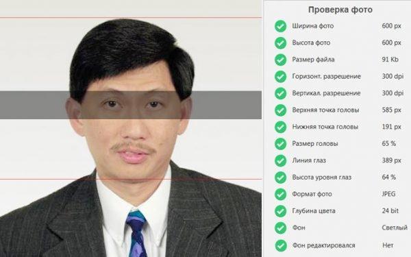 Скриншот страницы проверки фото на американскую визу