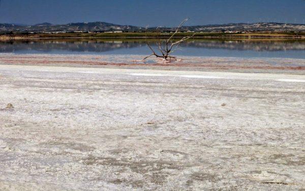 Солёное озеро в окрестностях Ларнаки