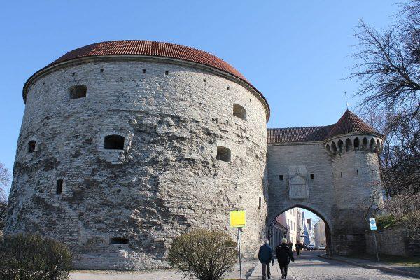 Башня «Толстая Маргарита» в Таллине