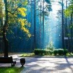 Парк Челюскинцев осенью