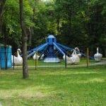 Аттракцион «Лебеди»