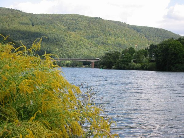 Вид на реку Неккар