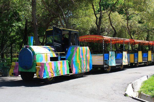 Аттракцион в ташкентском зоопарке